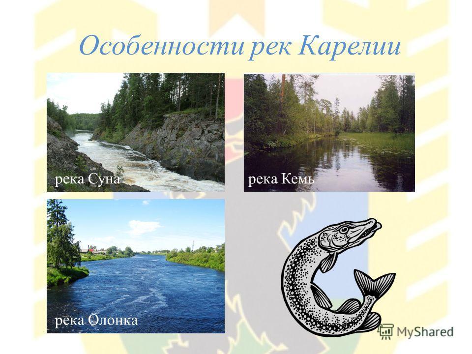 Особенности рек Карелии река Суна река Олонка река Кемь