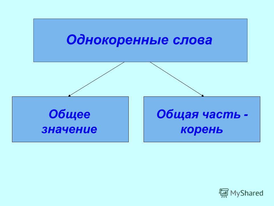 Однокоренные слова Общее значение Общая часть - корень
