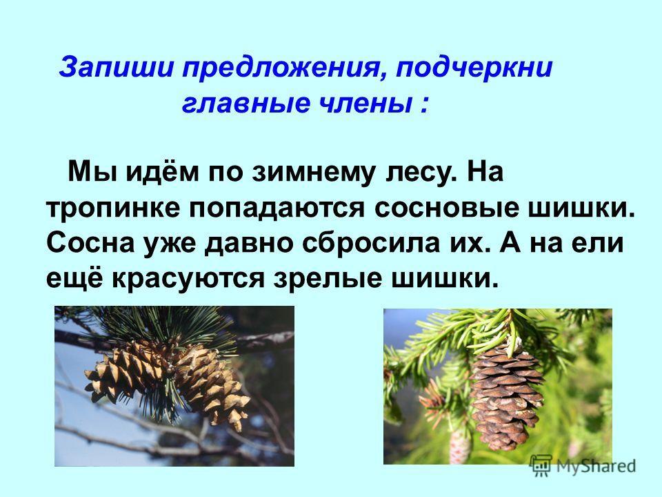 Однокоренные Слова Словарь Скачать