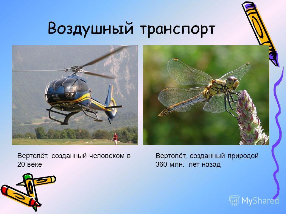 Воздушный транспорт Вертолёт, созданный человеком в 20 веке Вертолёт, созданный природой 360 млн. лет назад