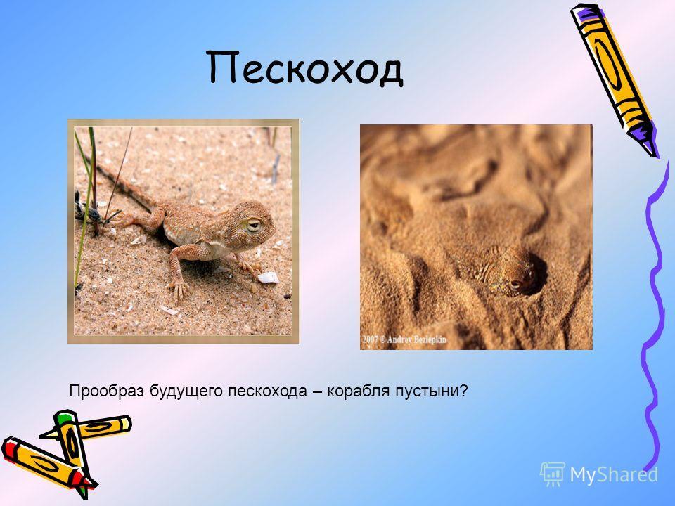 Пескоход Прообраз будущего пескохода – корабля пустыни?