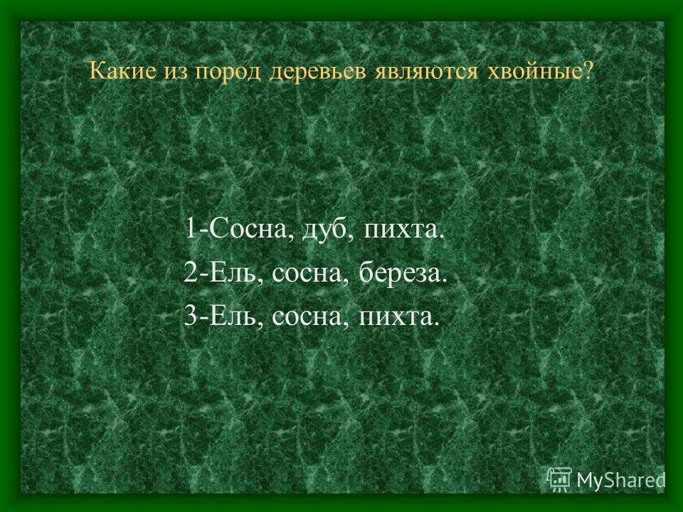 Какие из пород деревьев являются хвойные? 1-Сосна, дуб, пихта. 2-Ель, сосна, береза. 3-Ель, сосна, пихта.