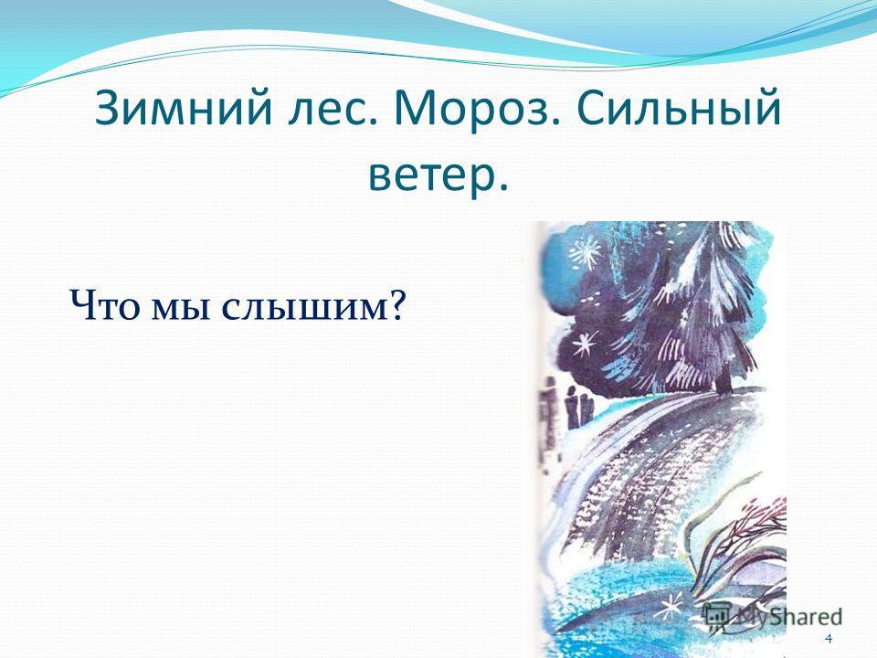 Зимний лес. Мороз. Сильный ветер. Что мы слышим? 4