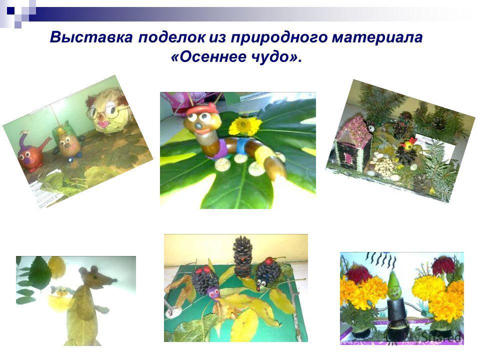 Выставка поделок из природного материала «Осеннее чудо».