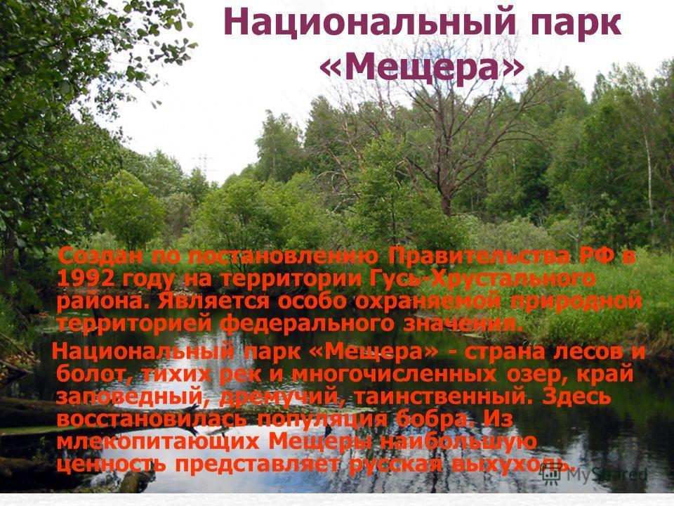 Национальный парк «Мещера» Создан по постановлению Правительства РФ в 1992 году на территории Гусь-Хрустального района. Является особо охраняемой природной территорией федерального значения. Национальный парк «Мещера» - страна лесов и болот, тихих ре