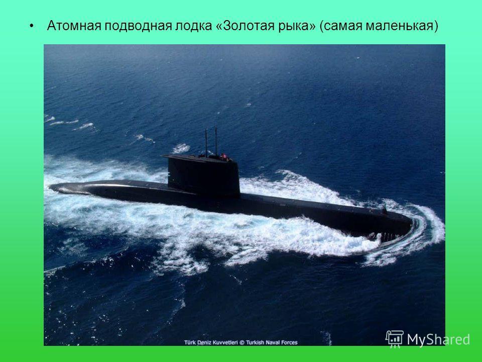 Атомная подводная лодка «Золотая рыка» (самая маленькая)