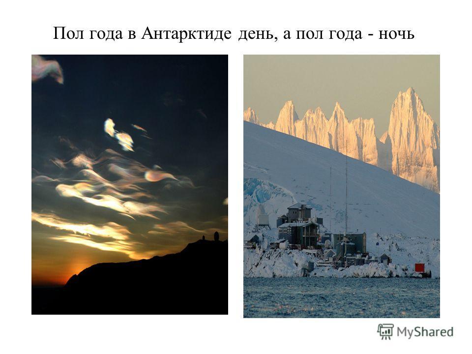 Пол года в Антарктиде день, а пол года - ночь