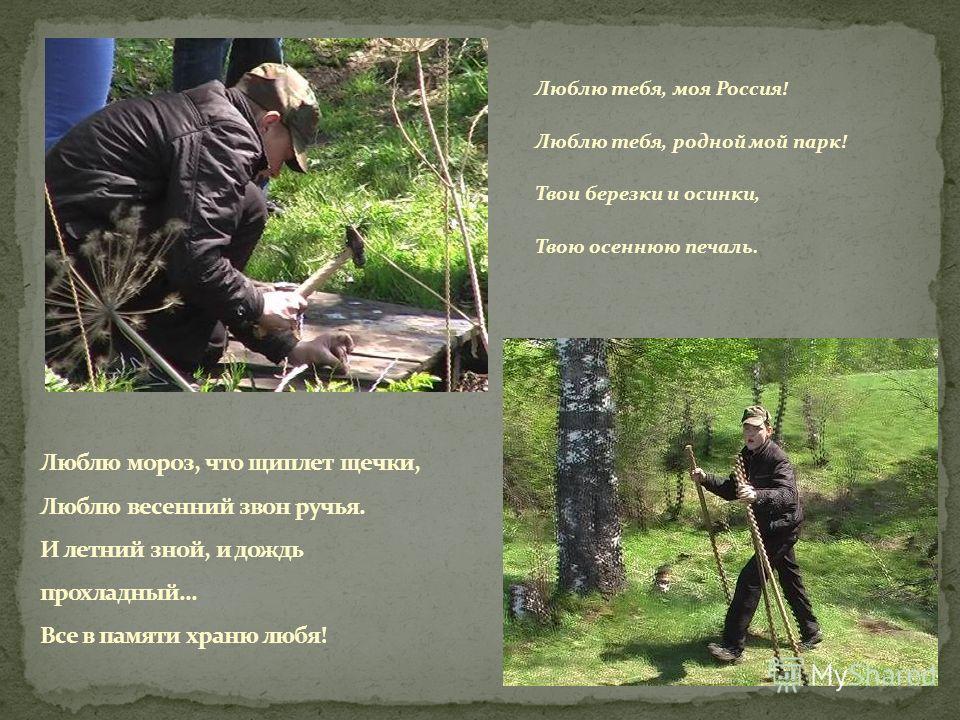 Люблю тебя, моя Россия! Люблю тебя, родной мой парк! Твои березки и осинки, Твою осеннюю печаль.