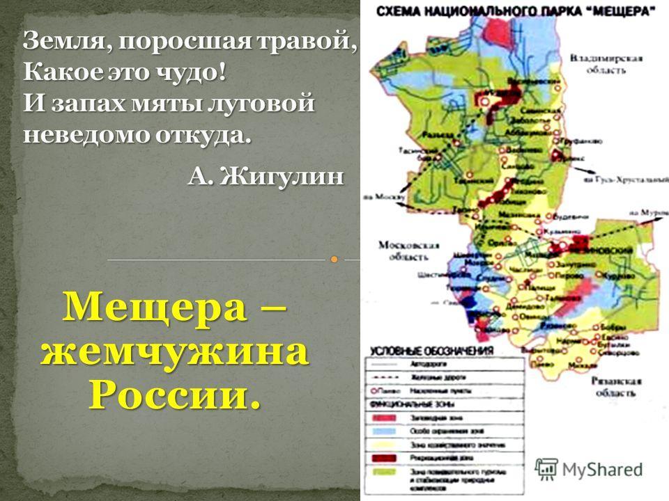 Мещера – жемчужина России.