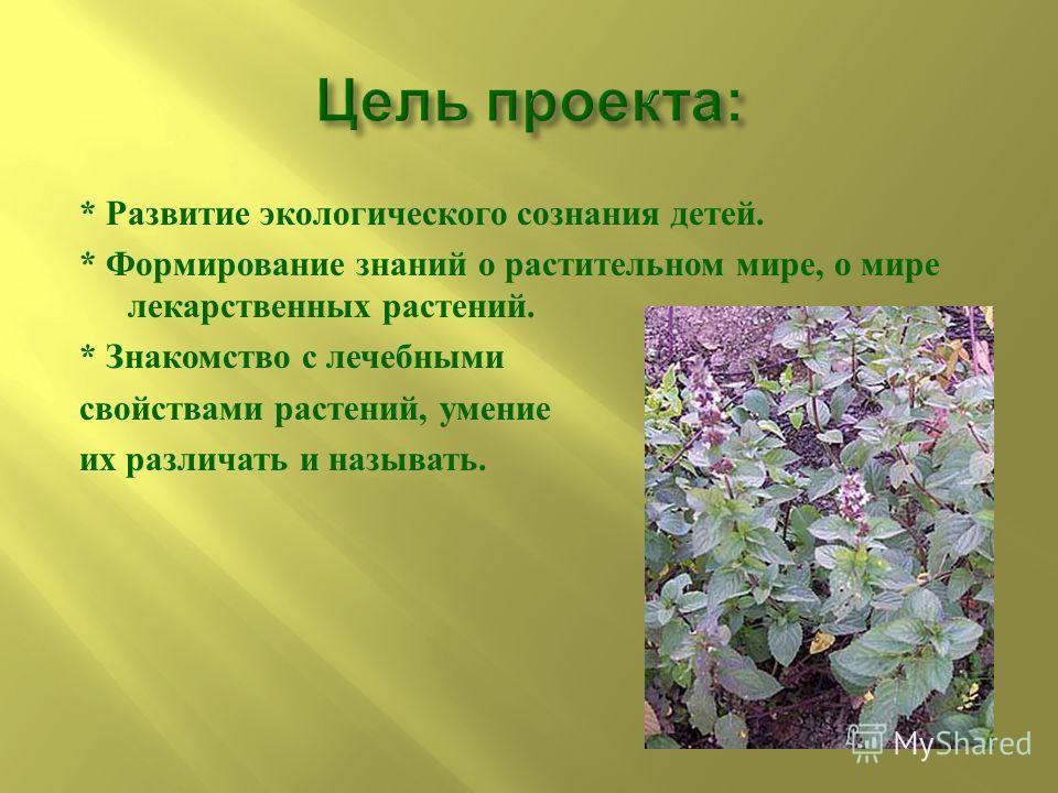 * Развитие экологического сознания детей. * Формирование знаний о растительном мире, о мире лекарственных растений. * Знакомство с лечебными свойствами растений, умение их различать и называть.