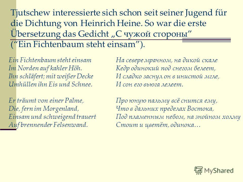 Tjutschew interessierte sich schon seit seiner Jugend für die Dichtung von Heinrich Heine. So war die erste Übersetzung das Gedicht С чужой стороны (Ein Fichtenbaum steht einsam). Ein Fichtenbaum steht einsam Im Norden auf kahler Höh. Ihn schläfert;
