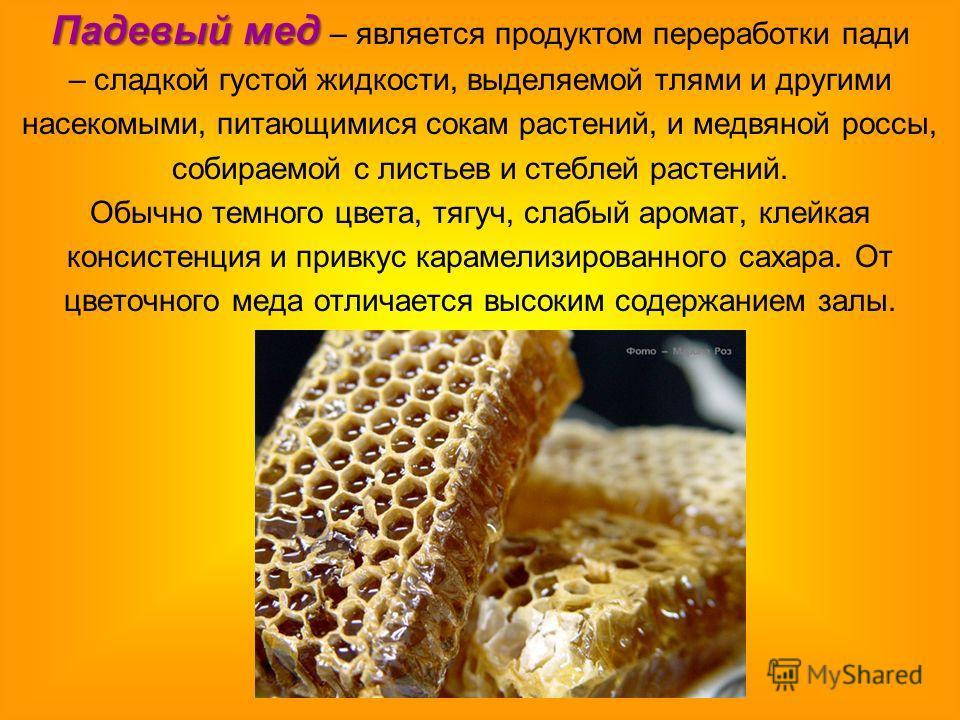 Падевый мед Падевый мед – является продуктом переработки пади – сладкой густой жидкости, выделяемой тлями и другими насекомыми, питающимися сокам раст