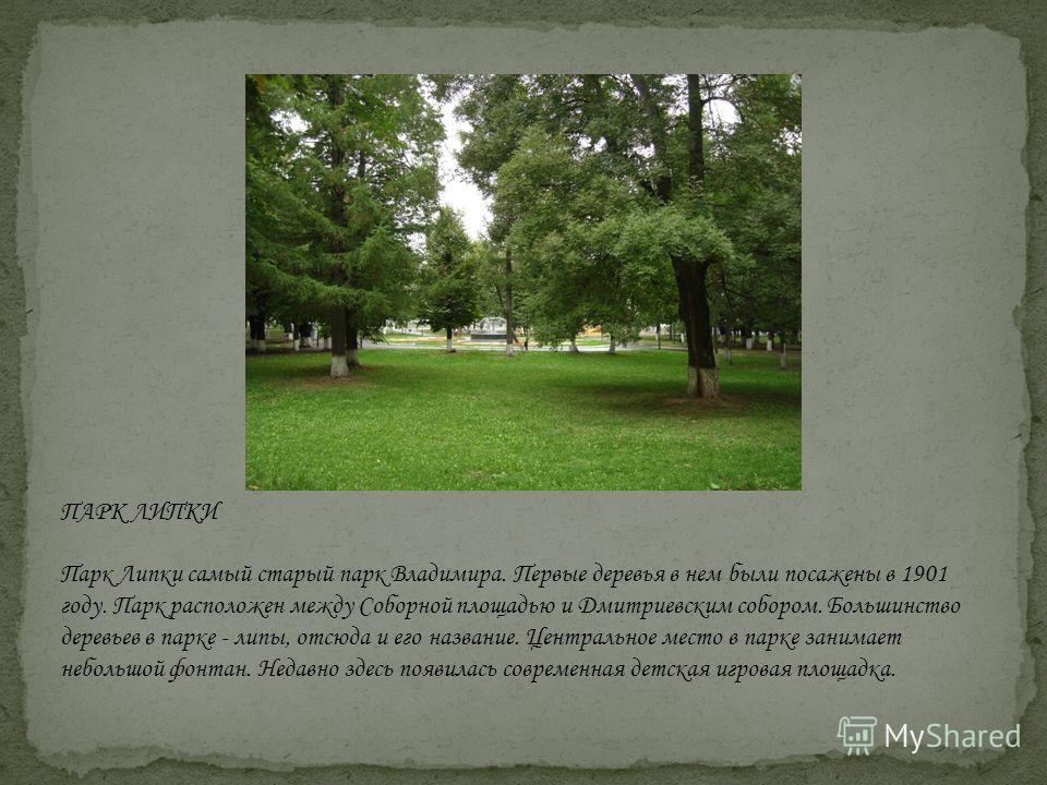 ПАРК ЛИПКИ Парк Липки самый старый парк Владимира. Первые деревья в нем были посажены в 1901 году. Парк расположен между Соборной площадью и Дмитриевским собором. Большинство деревьев в парке - липы, отсюда и его название. Центральное место в парке з