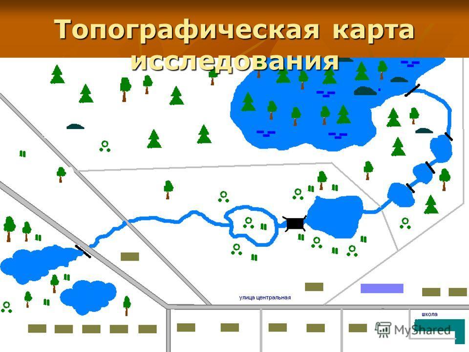 Топографическая карта исследования