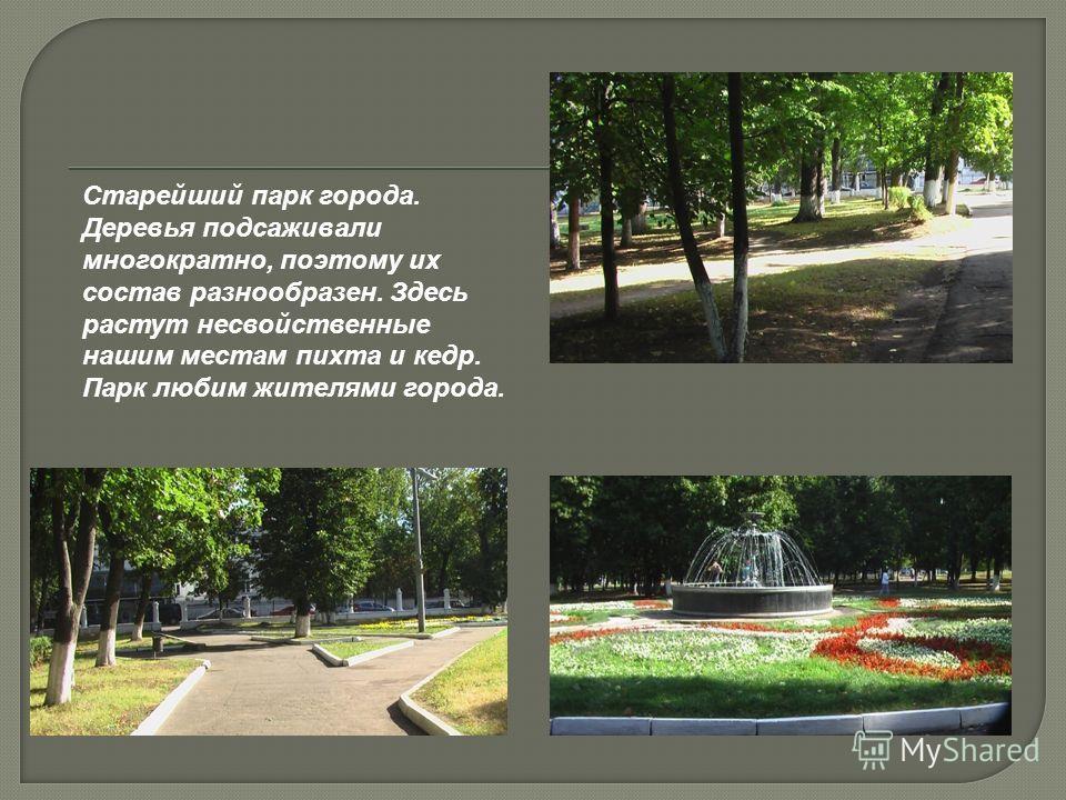 Старейший парк города. Деревья подсаживали многократно, поэтому их состав разнообразен. Здесь растут несвойственные нашим местам пихта и кедр. Парк любим жителями города.