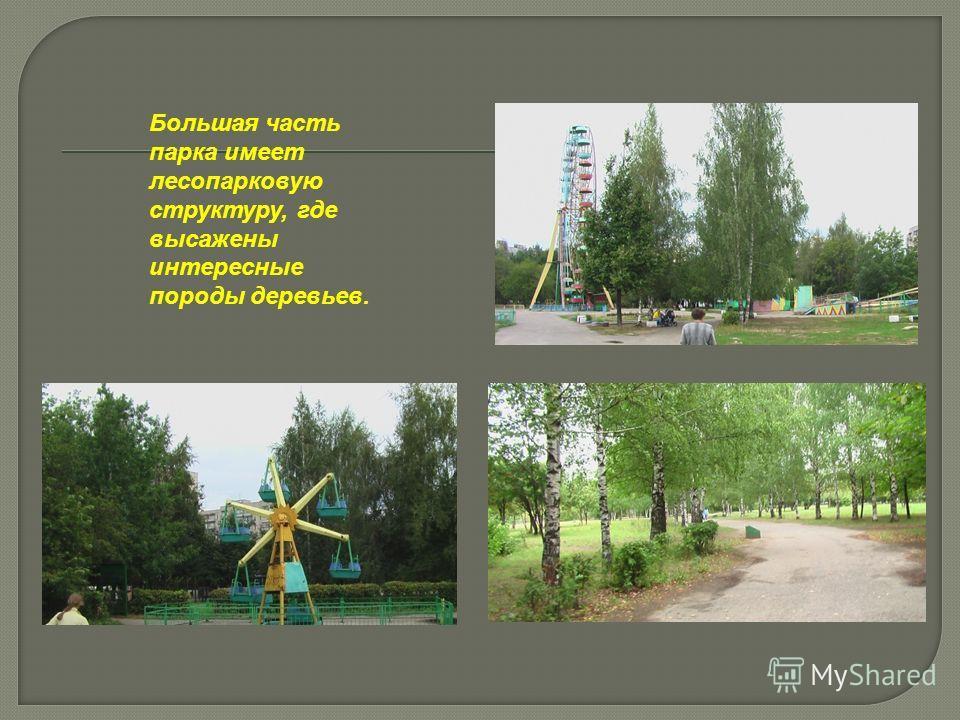 Большая часть парка имеет лесопарковую структуру, где высажены интересные породы деревьев.