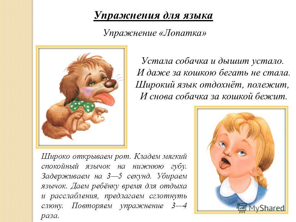 Упражнения для языка Упражнение «Лопатка» Устала собачка и дышит устало. И даже за кошкою бегать не стала. Широкий язык отдохнёт, полежит, И снова собачка за кошкой бежит. Широко открываем рот. Кладем мягкий спокойный язычок на нижнюю губу. Задержива