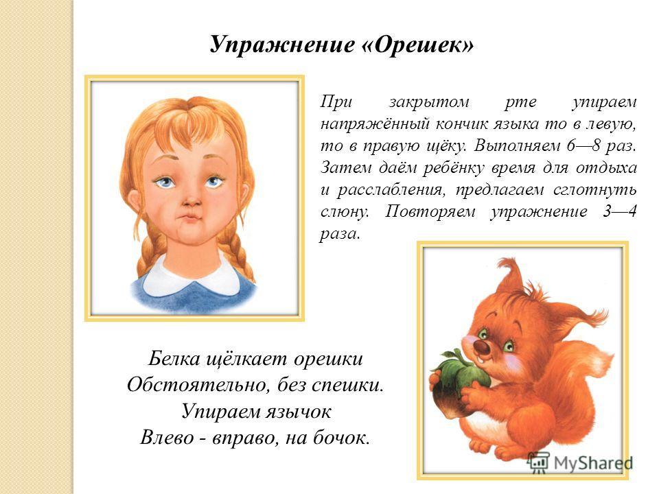 Упражнение «Орешек» При закрытом рте упираем напряжённый кончик языка то в левую, то в правую щёку. Выполняем 68 раз. Затем даём ребёнку время для отдыха и расслабления, предлагаем сглотнуть слюну. Повторяем упражнение 34 раза. Белка щёлкает орешки О
