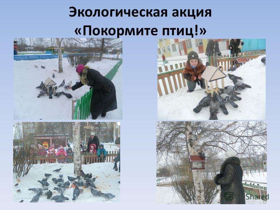 Экологическая акция «Покормите птиц!»