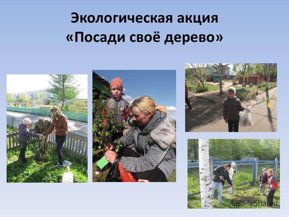 Экологическая акция «Посади своё дерево»