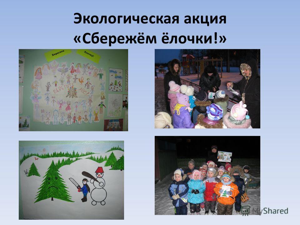 Экологическая акция «Сбережём ёлочки!»