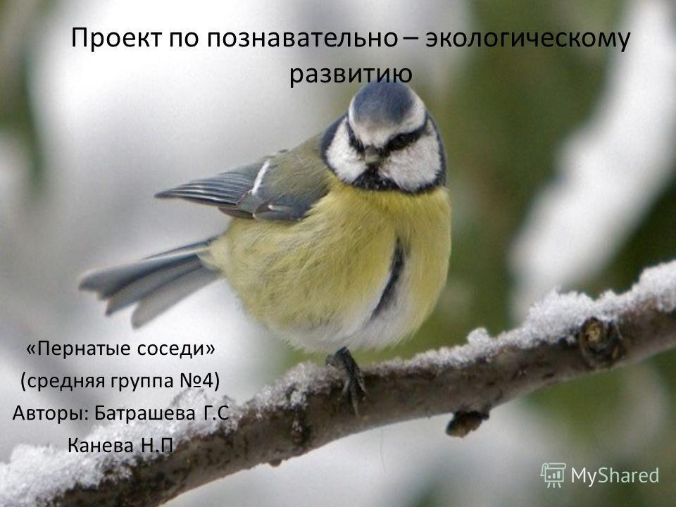 Проект по познавательно – экологическому развитию «Пернатые соседи» (средняя группа 4) Авторы: Батрашева Г.С Канева Н.П