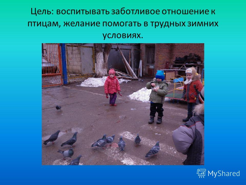 Цель: воспитывать заботливое отношение к птицам, желание помогать в трудных зимних условиях.