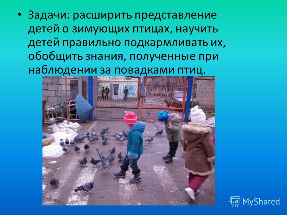 Задачи: расширить представление детей о зимующих птицах, научить детей правильно подкармливать их, обобщить знания, полученные при наблюдении за повадками птиц.