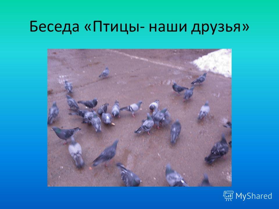 Беседа «Птицы- наши друзья»