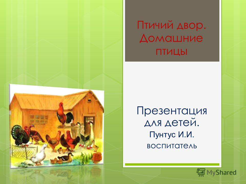 Птичий двор. Домашние птицы Презентация для детей. Пунтус И.И. воспитатель