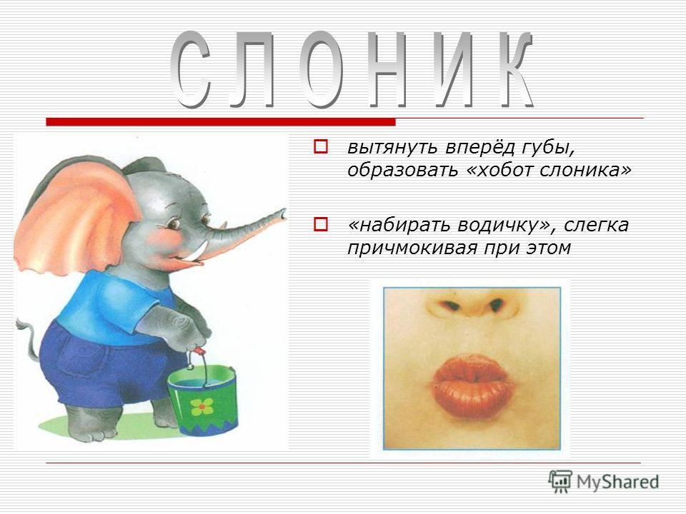 вытянуть вперёд губы, образовать «хобот слоника» «набирать водичку», слегка причмокивая при этом