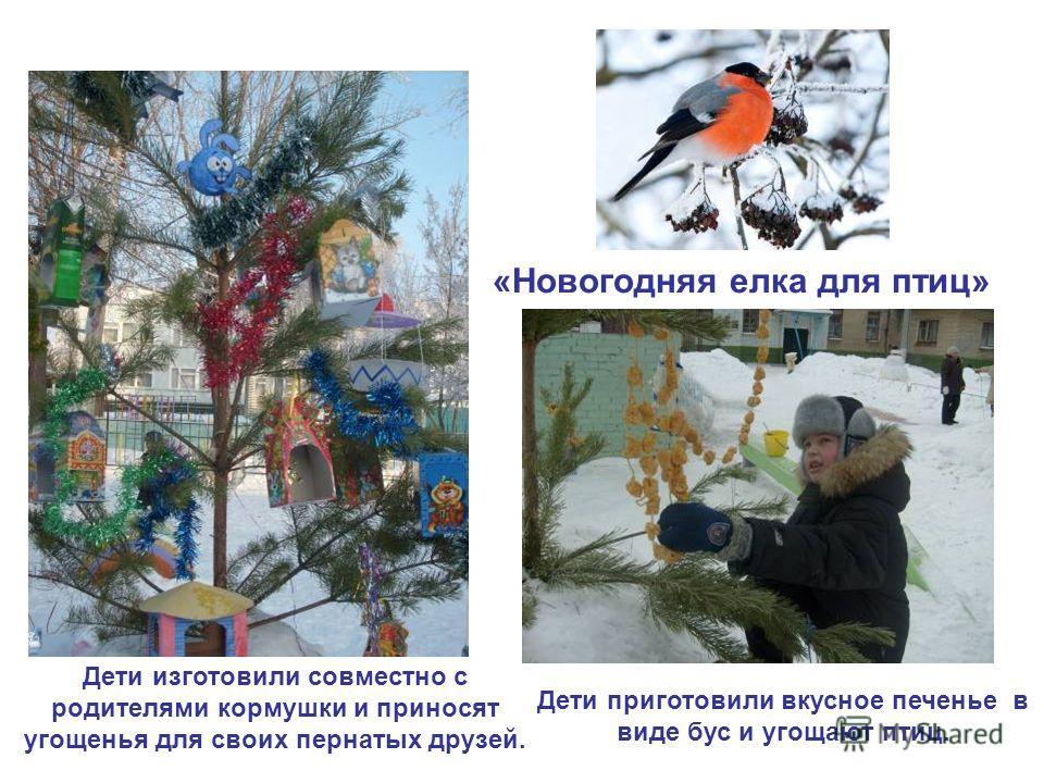 «Новогодняя елка для птиц» Дети изготовили совместно с родителями кормушки и приносят угощенья для своих пернатых друзей. Дети приготовили вкусное печенье в виде бус и угощают птиц.