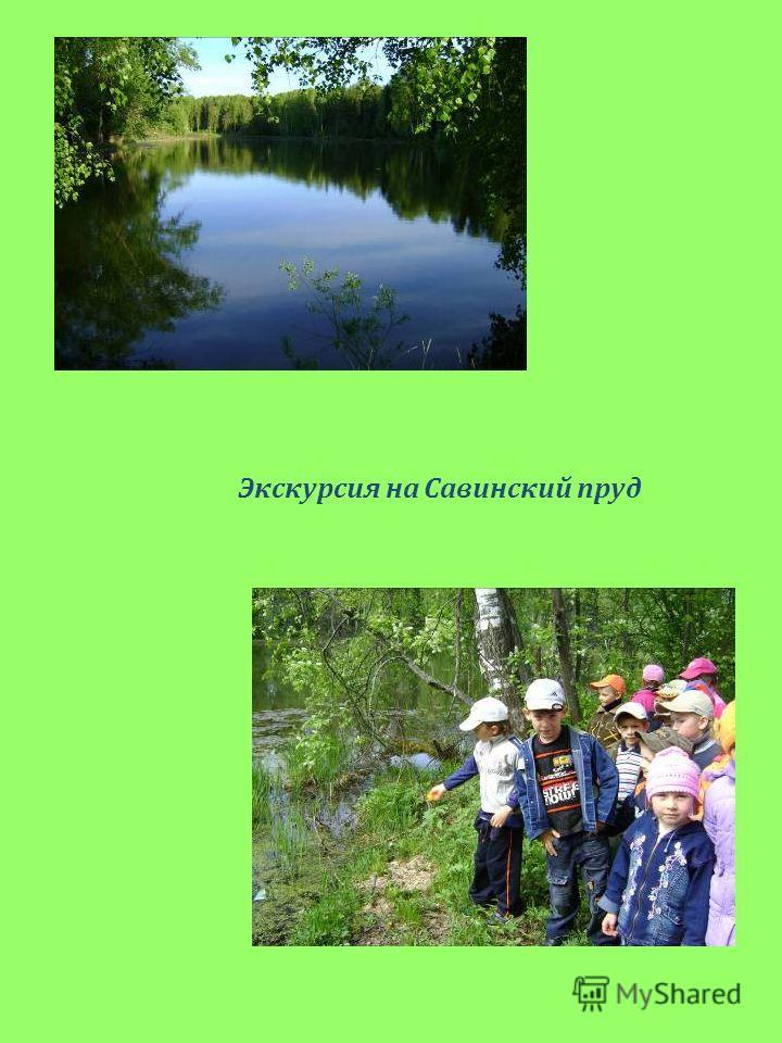 Экскурсия на Савинский пруд