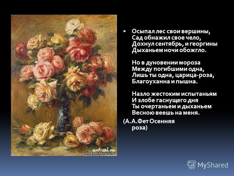 анализ стихотворения фета осенняя роза