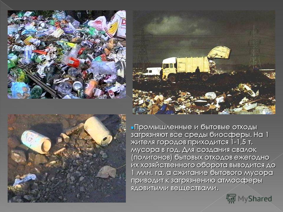 Промышленные и бытовые отходы загрязняют все среды биосферы. На 1 жителя городов приходится 1-1,5 т. мусора в год. Для создания свалок (полигонов) бытовых отходов ежегодно их хозяйственного оборота выводится до 1 млн. га, а сжигание бытового мусора п