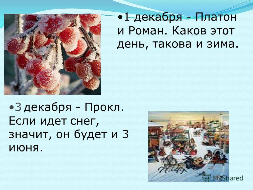 1 декабря - Платон и Роман. Каков этот день, такова и зима. 3 декабря - Прокл. Если идет снег, значит, он будет и 3 июня.