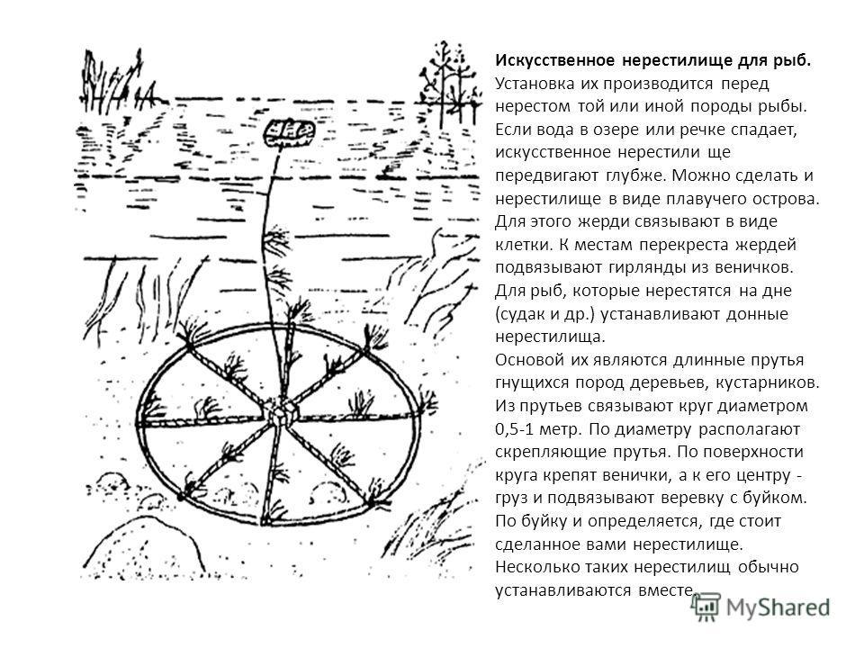 Искусственное нерестилище для рыб. Установка их производится перед нерестом той или иной породы рыбы. Если вода в озере или речке спадает, искусственное нерестили ще передвигают глубже. Можно сделать и нерестилище в виде плавучего острова. Для этого