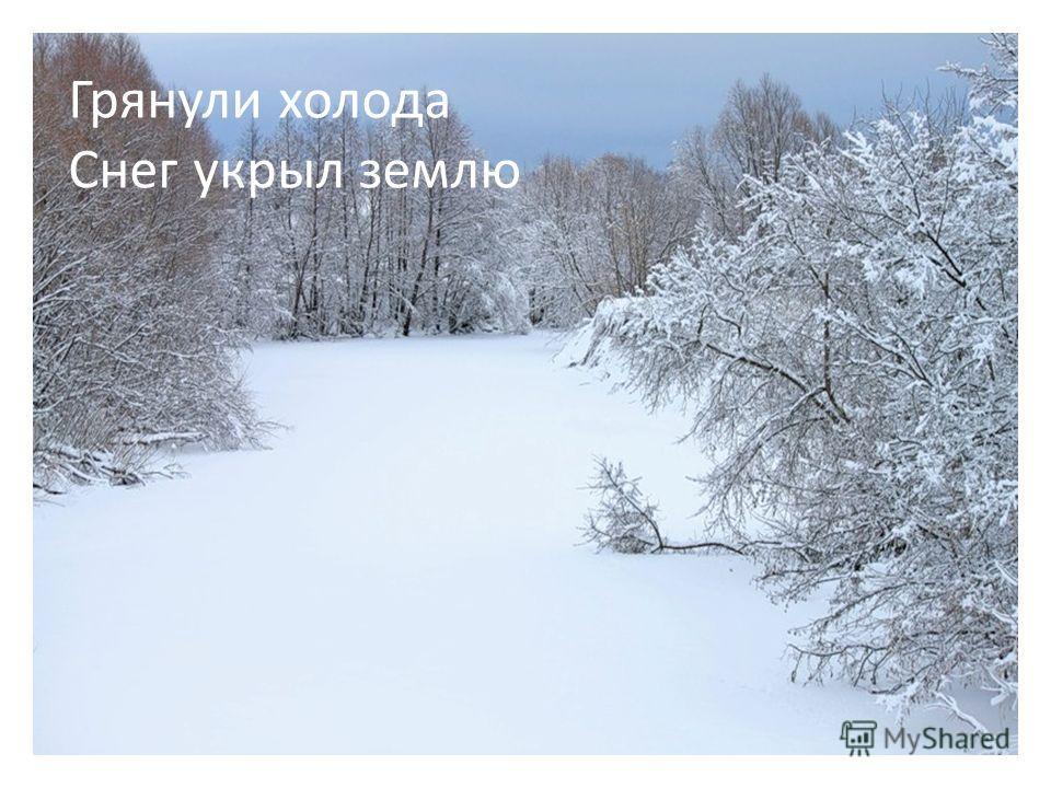 Грянули холода Снег укрыл землю