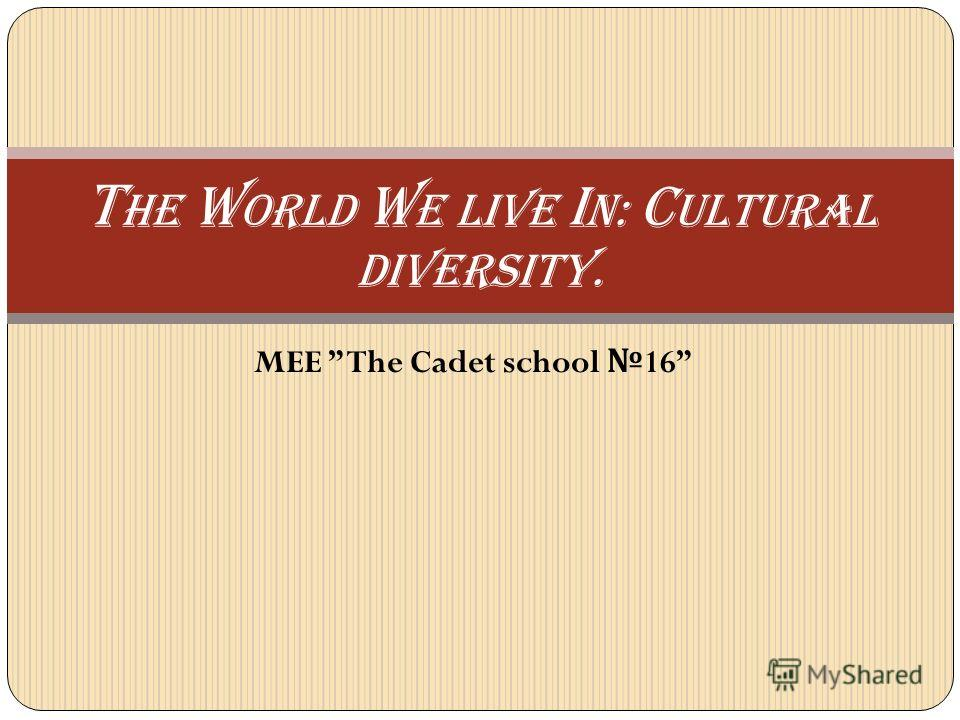 MEE The Cadet school 16 T he w orld w e Live i n: c ultural Diversity.