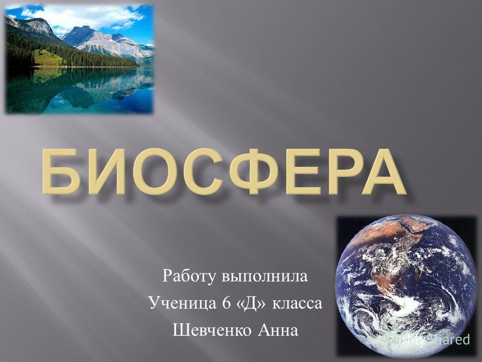 Работу выполнила Ученица 6 « Д » класса Шевченко Анна