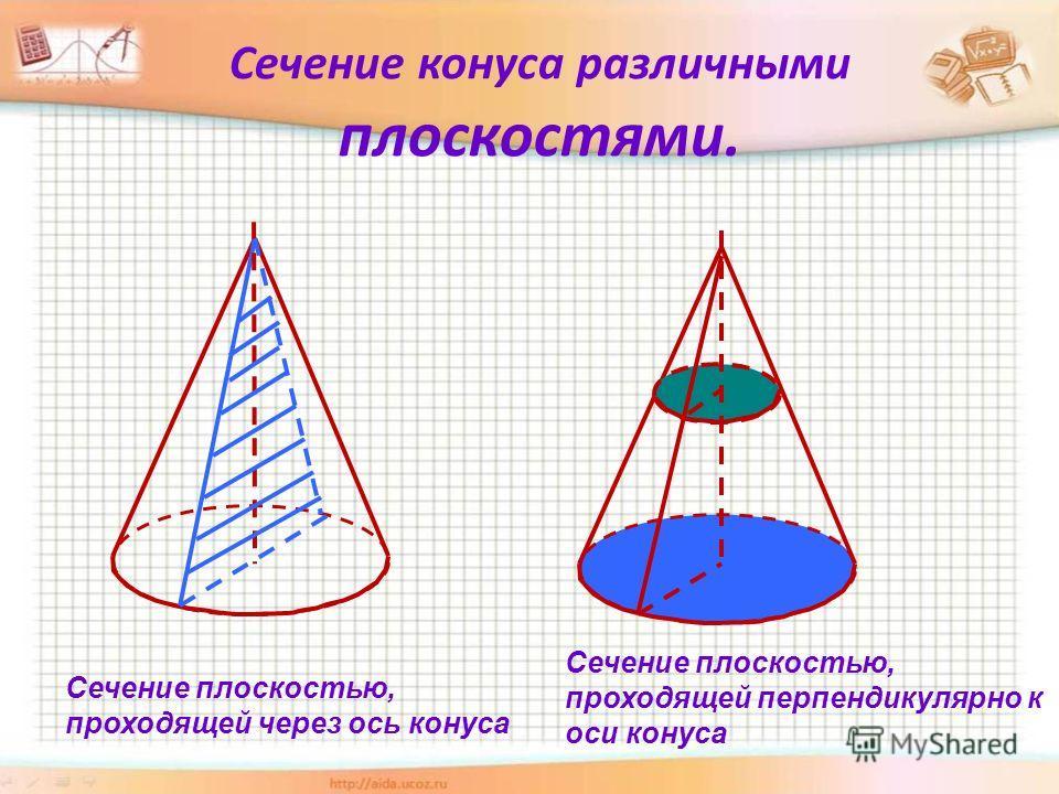 Сечение конуса различными плоскостями. Сечение плоскостью, проходящей через ось конуса Сечение плоскостью, проходящей перпендикулярно к оси конуса