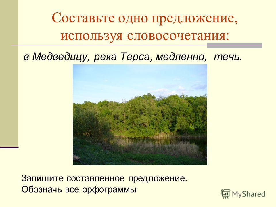 Составьте одно предложение, используя словосочетания: в Медведицу, река Терса, медленно, течь. Запишите составленное предложение. Обозначь все орфограммы