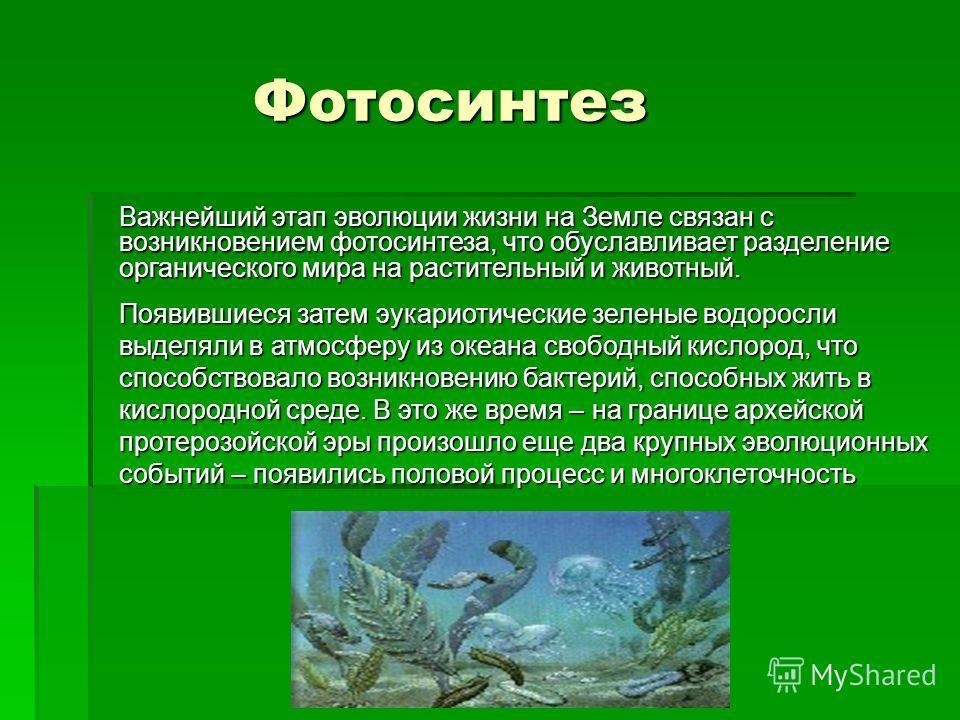 Фотосинтез Фотосинтез Важнейший этап эволюции жизни на Земле связан с возникновением фотосинтеза, что обуславливает разделение органического мира на растительный и животный. Появившиеся затем эукариотические зеленые водоросли выделяли в атмосферу из