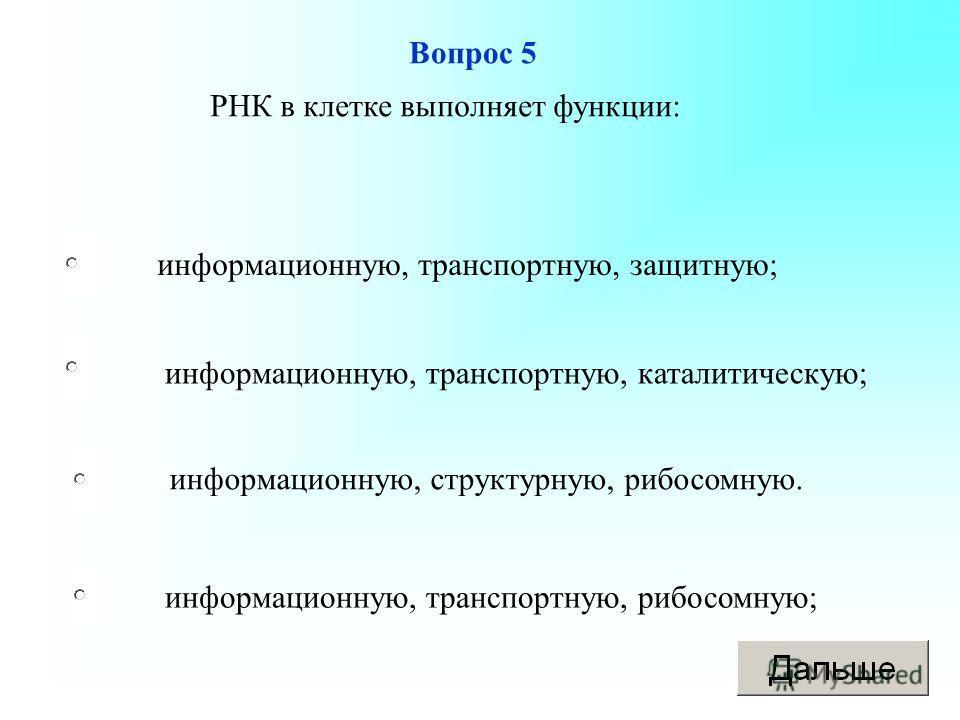 информационную, транспортную, рибосомную; информационную, транспортную, каталитическую; информационную, структурную, рибосомную. информационную, транспортную, защитную; Вопрос 5 РНК в клетке выполняет функции: