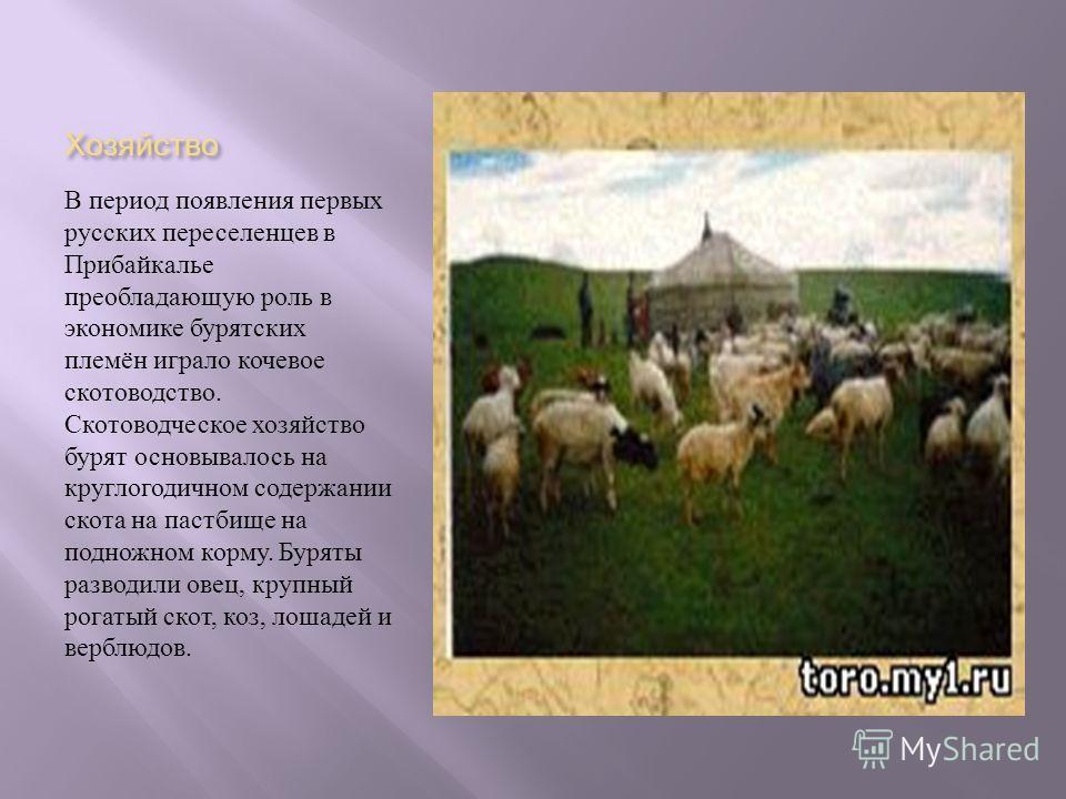 Хозяйство В период появления первых русских переселенцев в Прибайкалье преобладающую роль в экономике бурятских племён играло кочевое скотоводство. Скотоводческое хозяйство бурят основывалось на круглогодичном содержании скота на пастбище на подножно