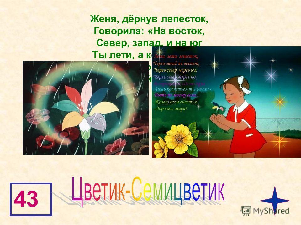 43 Женя, дёрнув лепесток, Говорила: «На восток, Север, запад, и на юг Ты лети, а кончив круг, Сделай чудо, лепесток!» Как волшебный звать цветок?