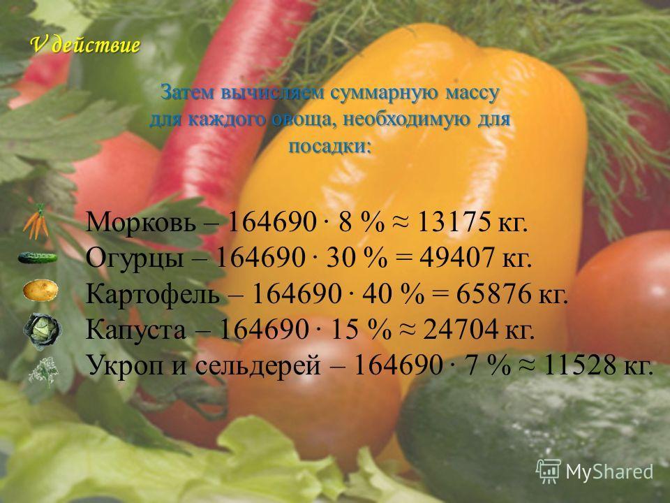 Морковь – 164690 8 % 13175 кг. Огурцы – 164690 30 % = 49407 кг. Картофель – 164690 40 % = 65876 кг. Капуста – 164690 15 % 24704 кг. Укроп и сельдерей – 164690 7 % 11528 кг. V действие Затем вычисляем суммарную массу для каждого овоща, необходимую для