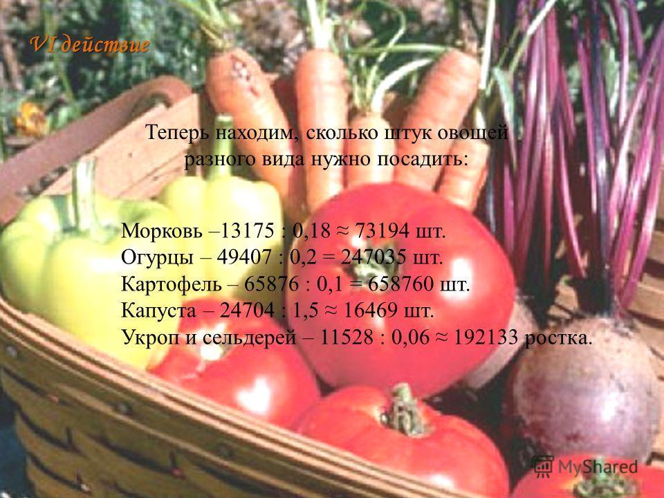 Морковь –13175 : 0,18 73194 шт. Огурцы – 49407 : 0,2 = 247035 шт. Картофель – 65876 : 0,1 = 658760 шт. Капуста – 24704 : 1,5 16469 шт. Укроп и сельдерей – 11528 : 0,06 192133 ростка. VI действие Теперь находим, сколько штук овощей разного вида нужно