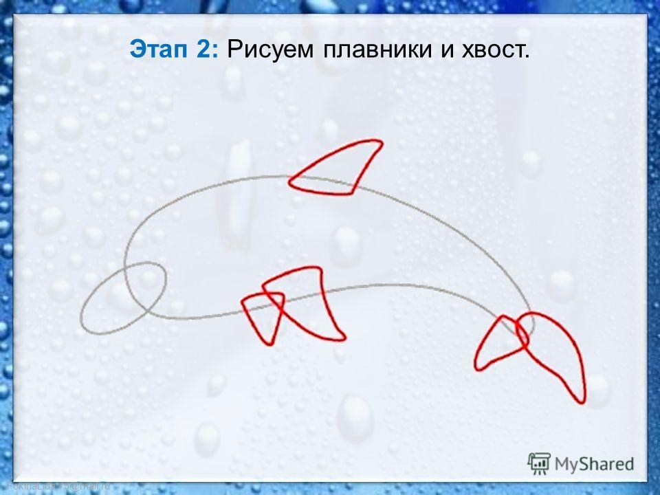 FokinaLida.75@mail.ru Этап 2: Рисуем плавники и хвост.