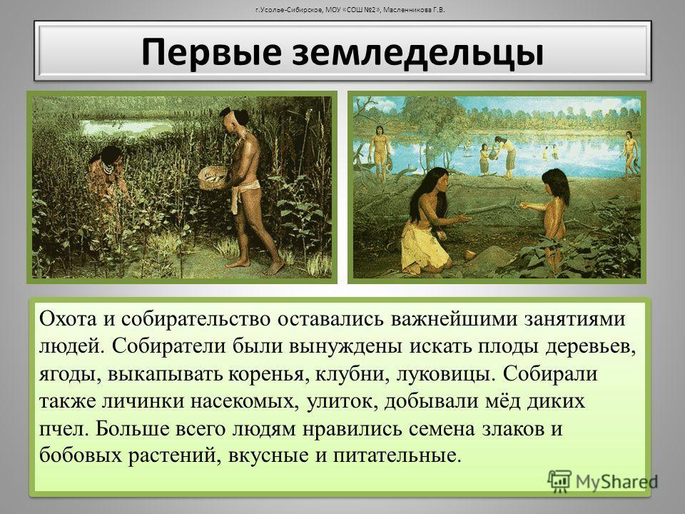 Охота и собирательство оставались важнейшими занятиями людей. Собиратели были вынуждены искать плоды деревьев, ягоды, выкапывать коренья, клубни, луковицы. Собирали также личинки насекомых, улиток, добывали мёд диких пчел. Больше всего людям нравилис